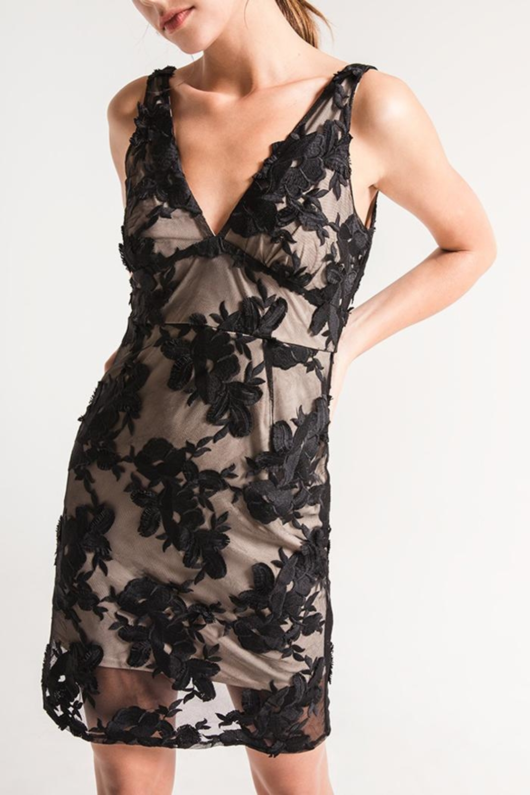 Black Swan Lace Overlay Dress - Main Image