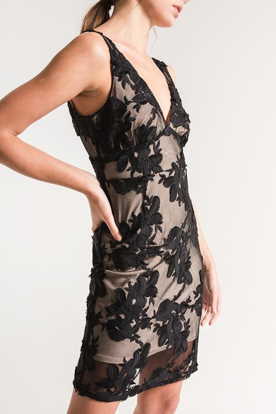 Black Swan Lace Overlay Dress - Front Full Image