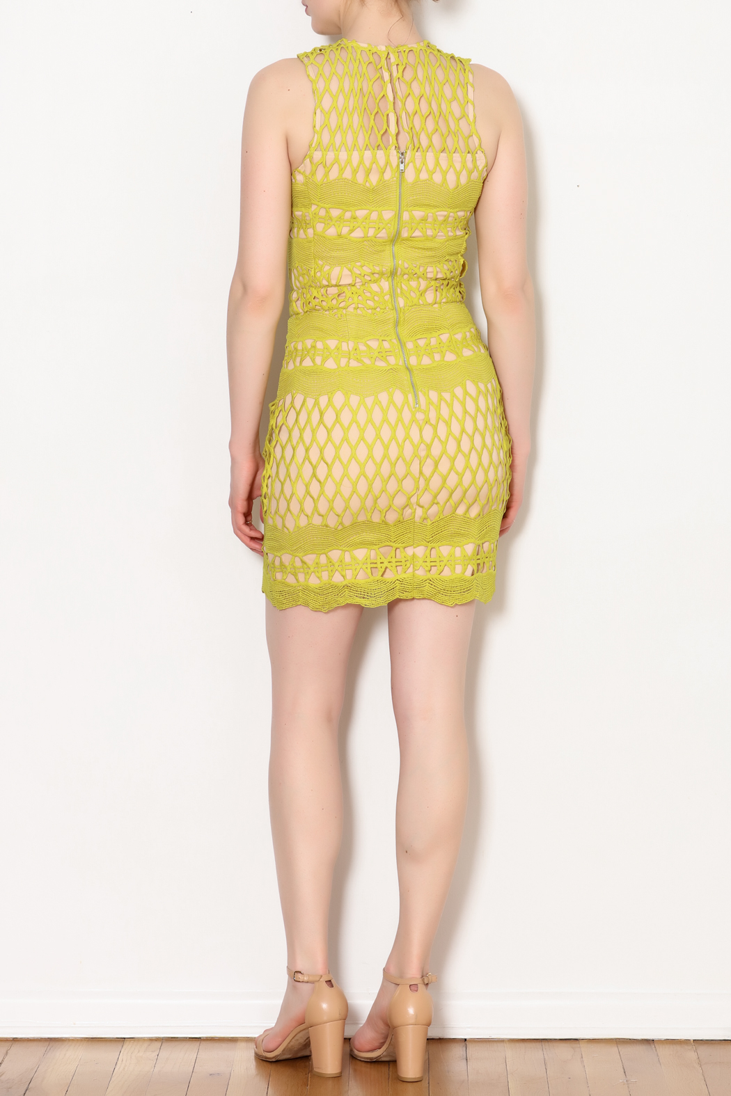 Endless Rose Lace Overlay Dress - Side Cropped Image