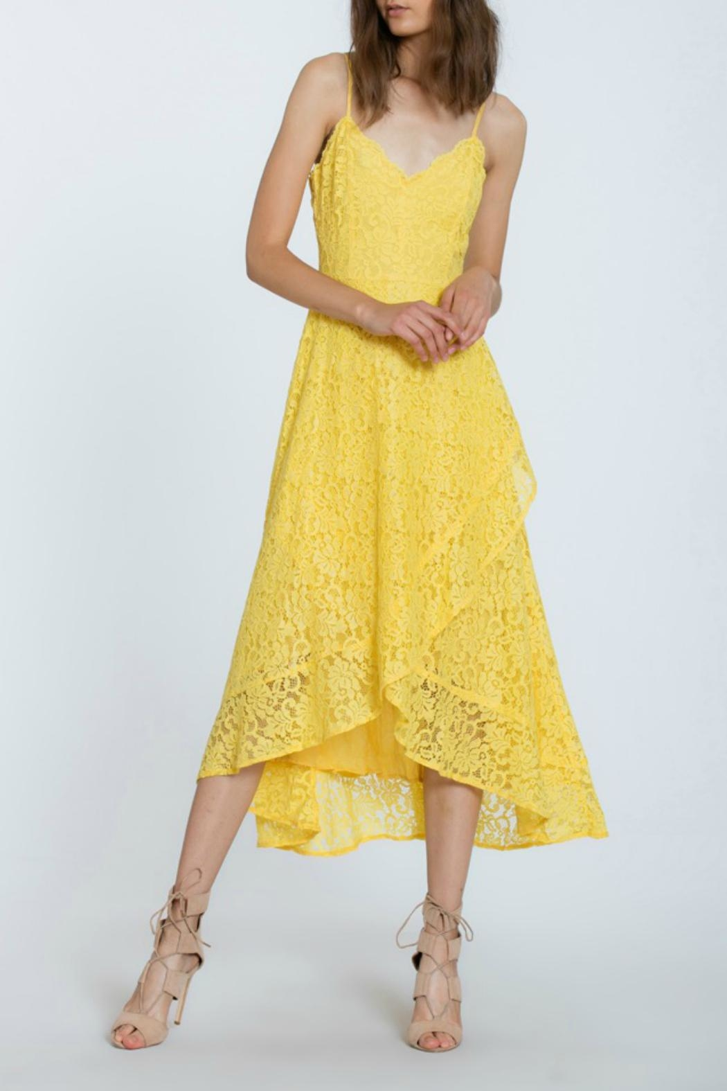 The Room Lace Overlay Dress - Side Cropped Image