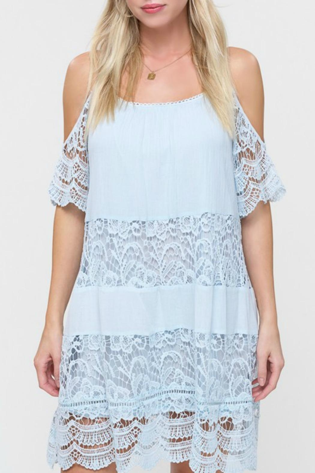 Listicle Lace Panel Dress - Front Cropped Image
