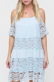 Listicle Lace Panel Dress - Product Mini Image