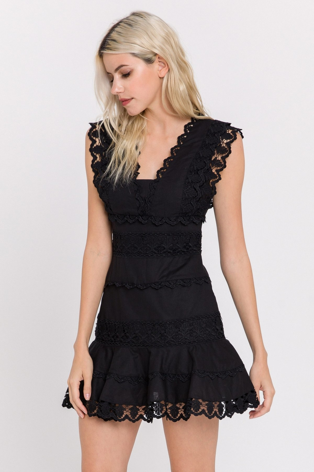 Endless Rose Lace Plunge Dress - Front Cropped Image