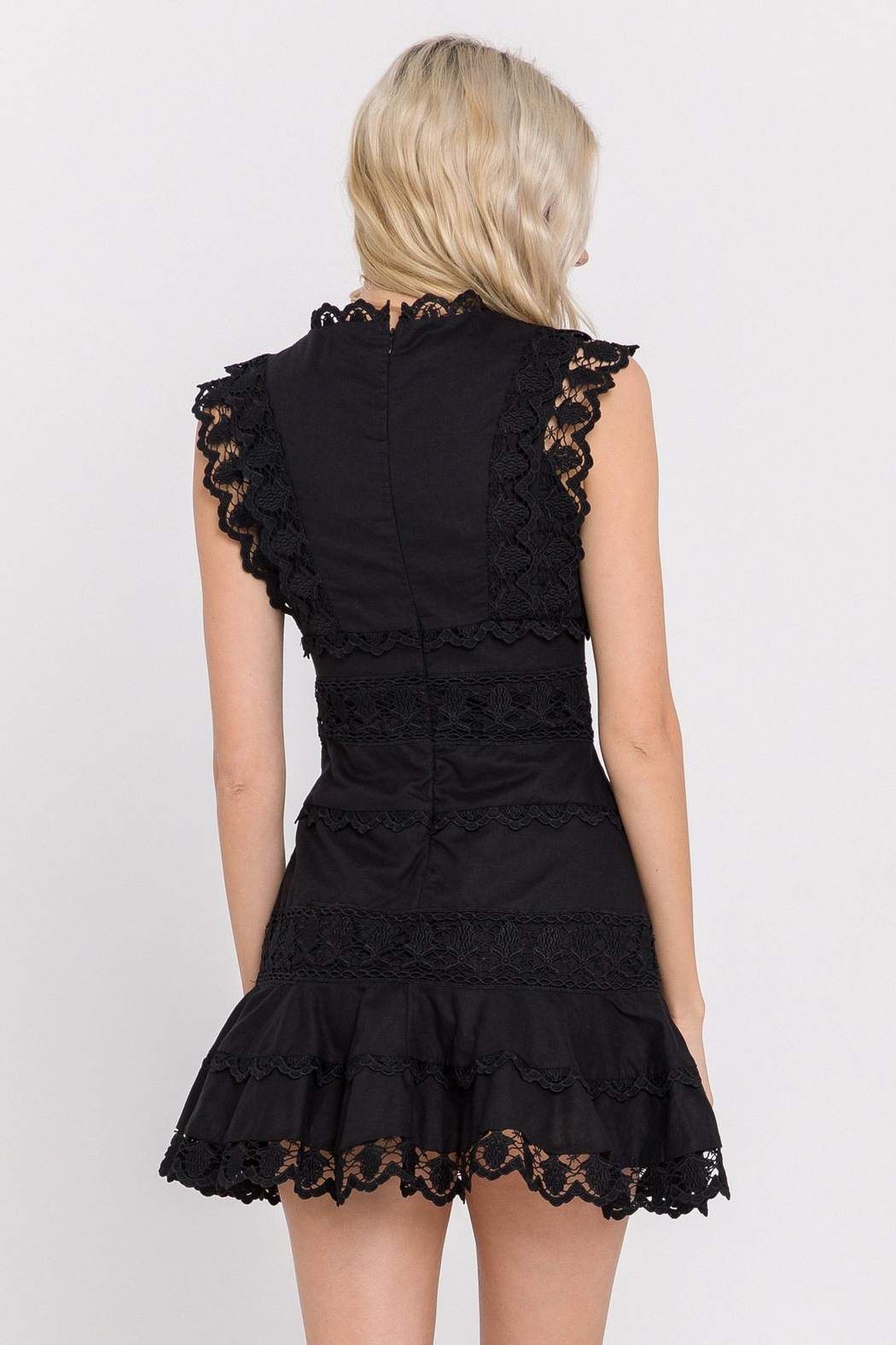 Endless Rose Lace Plunge Dress - Front Full Image