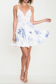 Latiste Lace Print Dress - Product Mini Image