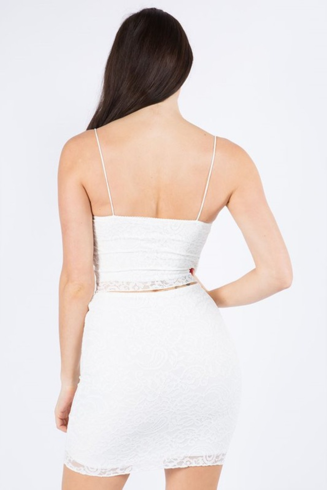 The Bae House Lace SKIRT - Back Cropped Image