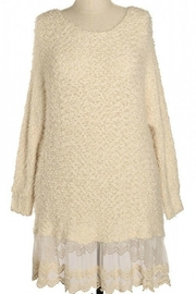 A'reve Plus Lace Sweater Dress - Front cropped