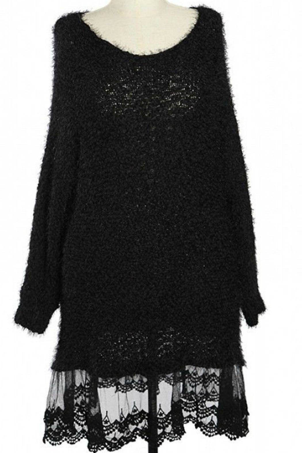 A'reve Plus Lace Sweater Dress - Front Cropped Image