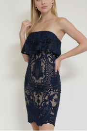 in the Beginning Lace Tube Dress - Front full body