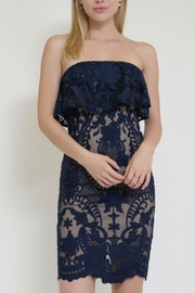 in the Beginning Lace Tube Dress - Front cropped
