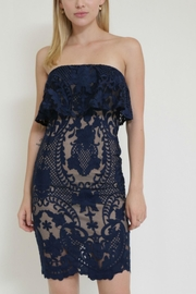 in the Beginning Lace Tube Dress - Back cropped
