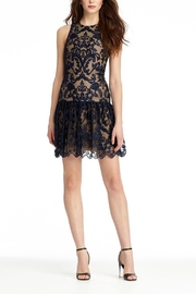 Monique Lhuillier Lace With Drop Waist - Product Mini Image