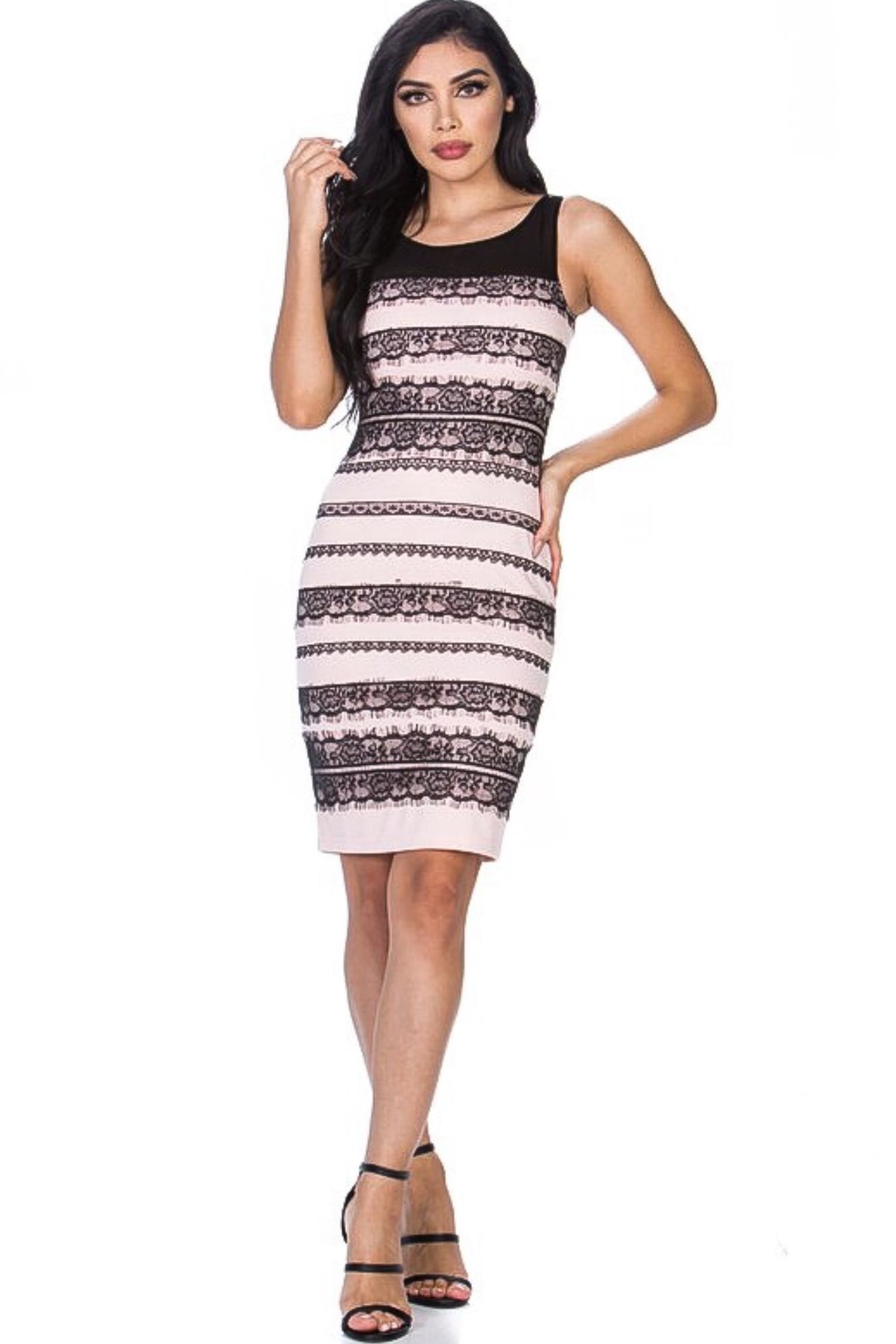 Leshop Laced Detailed Bodycon - Front Cropped Image