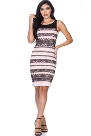 Leshop Laced Detailed Bodycon - Front cropped