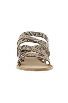 Coconuts by Matisse Ladylike Strappy Sandal - Alternate List Image