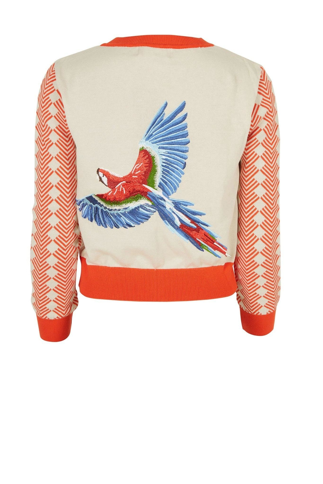 Palava Large Parrot Cardi - Front Cropped Image