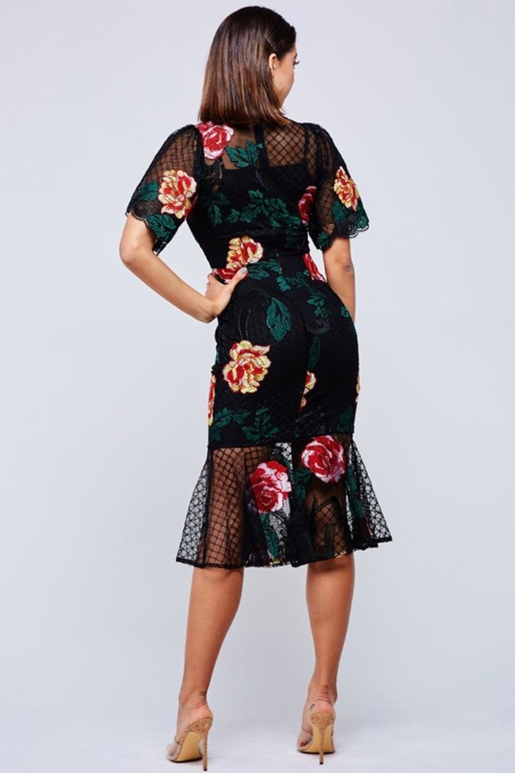 Latiste Floral Embroidered Midi-Dress - Front Full Image