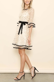 Latiste Gold Polkadot Dress - Product Mini Image