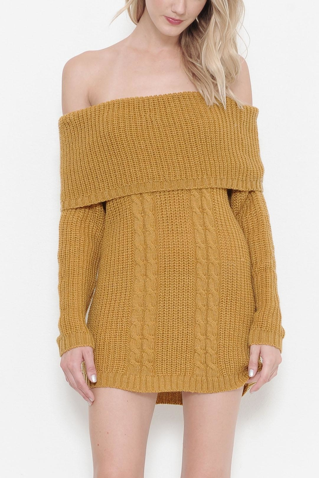 Latiste Knit Sweater Dress - Front Cropped Image