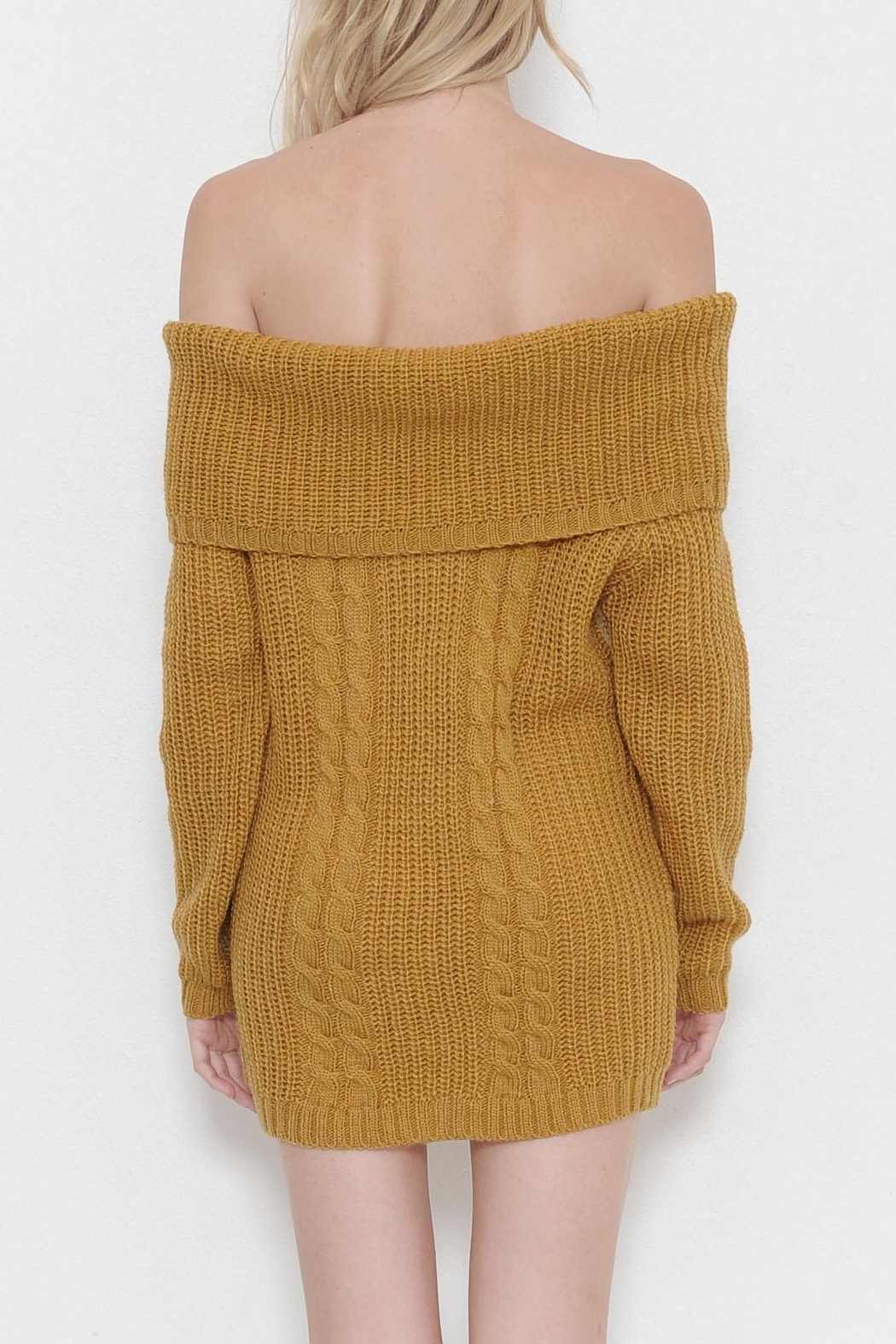 Latiste Knit Sweater Dress - Front Full Image