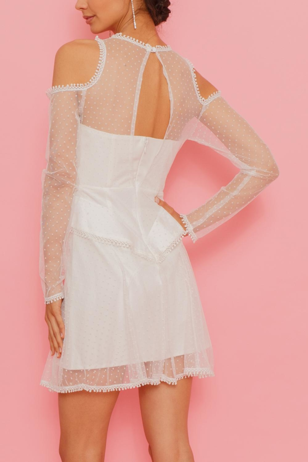Latiste Net Overlay Dress - Side Cropped Image