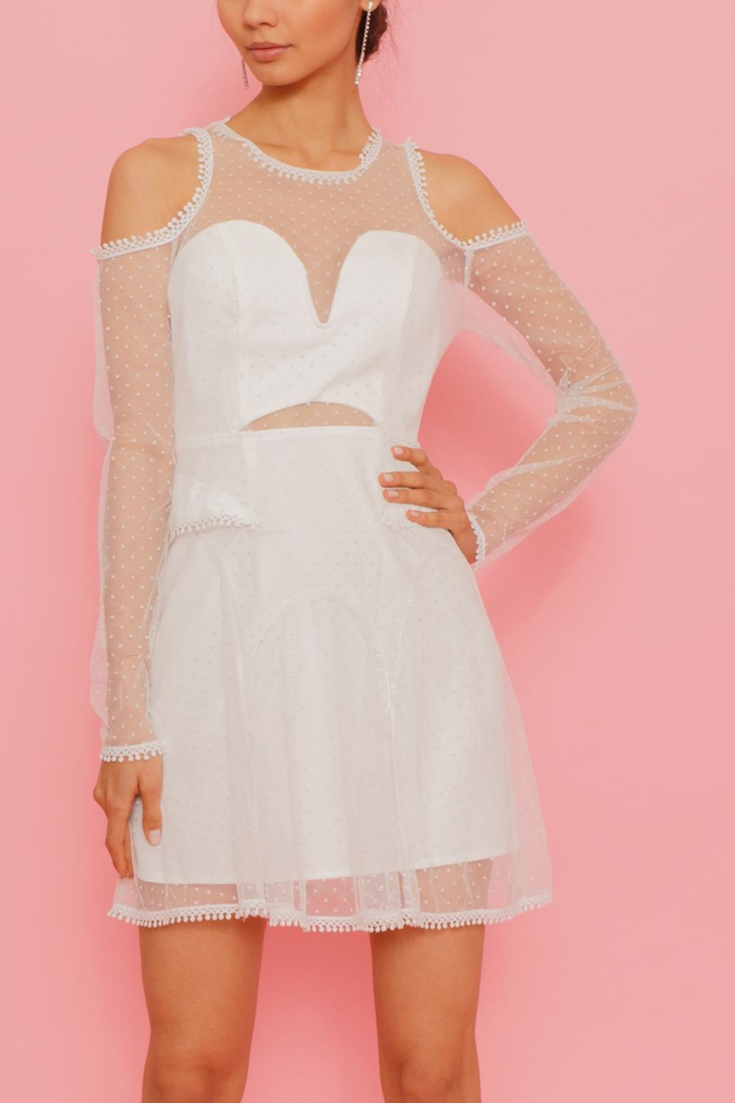 Latiste Net Overlay Dress - Front Cropped Image