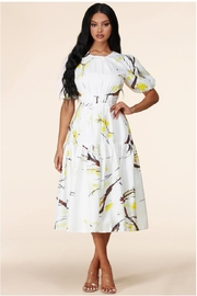 Latiste Open-Back Abstract Dress - Front full body