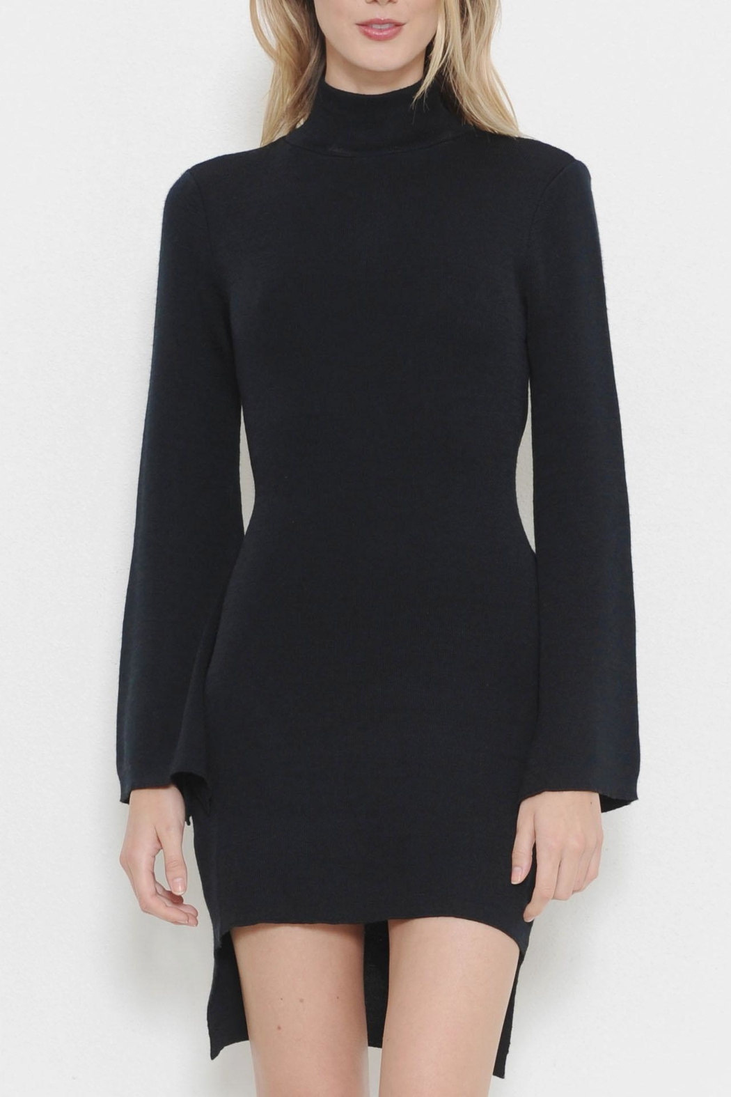 Latiste Turtleneck Sweater Dress - Main Image