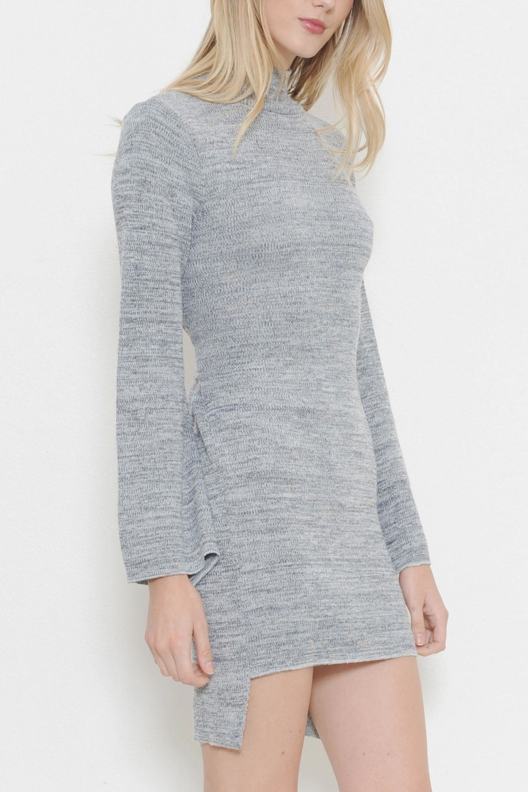 Latiste Turtleneck Sweater Dress - Front Cropped Image