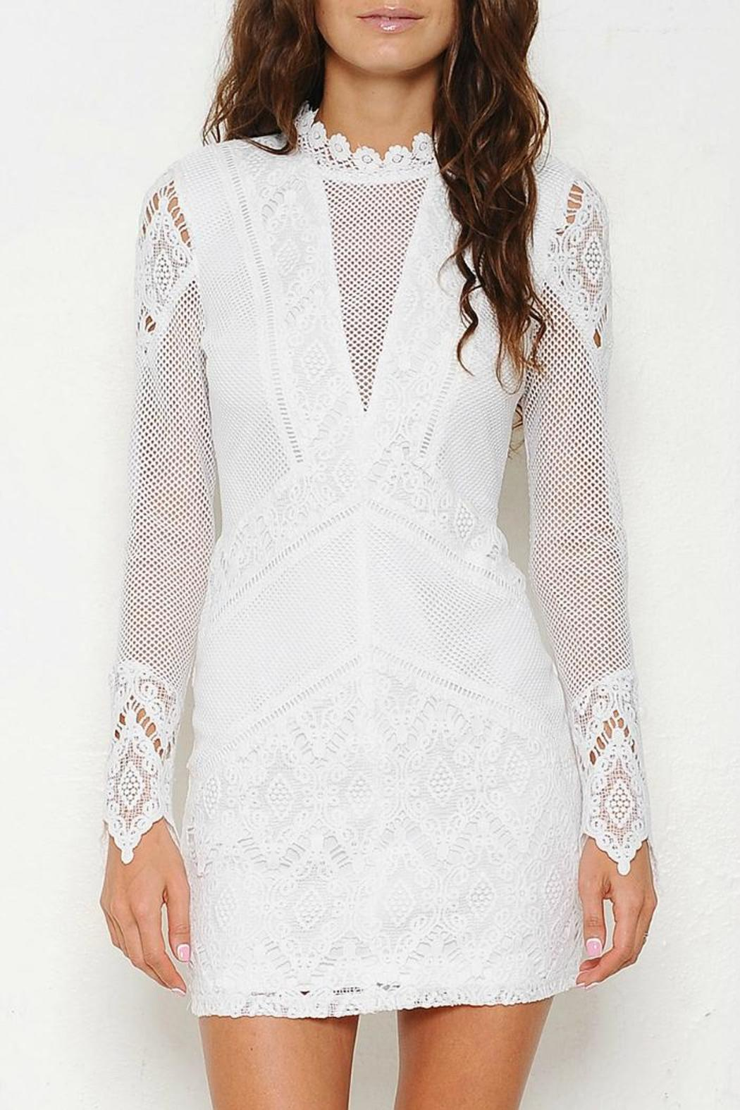 Latiste by AMY Sheer Mesh Dress - Front Cropped Image