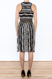 Laundry Stripe Knee Dress - Back cropped
