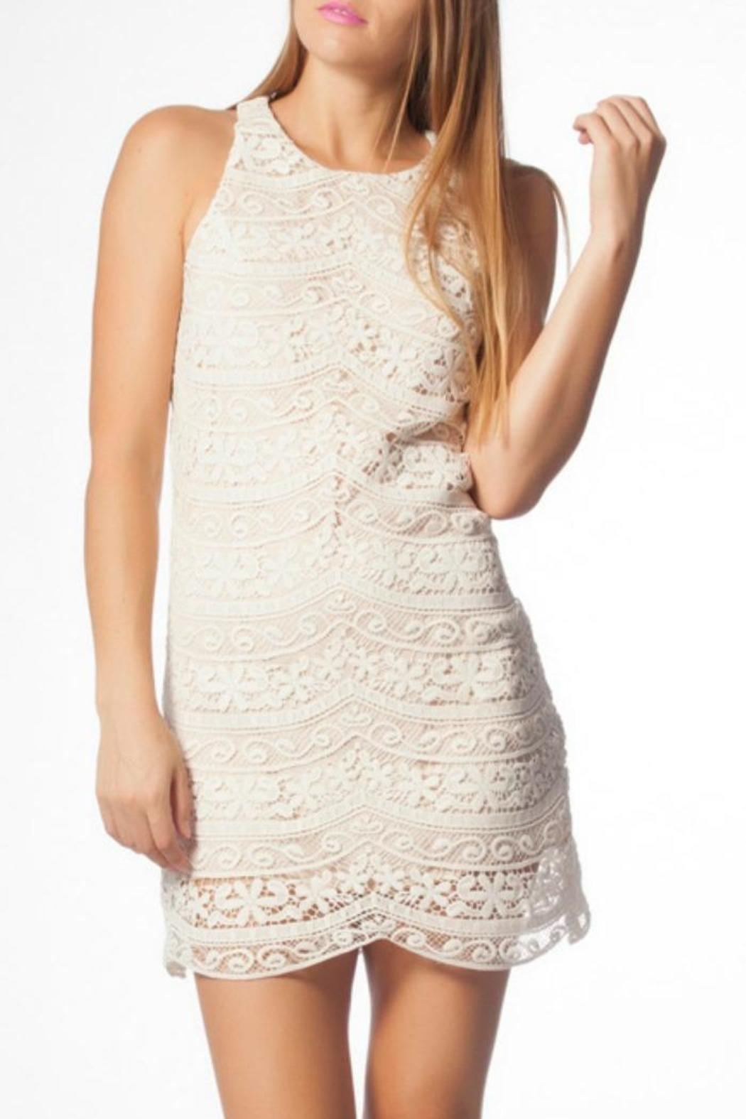 886a1f602 Lavender Brown White Lace Dress from Orlando by Charyli — Shoptiques