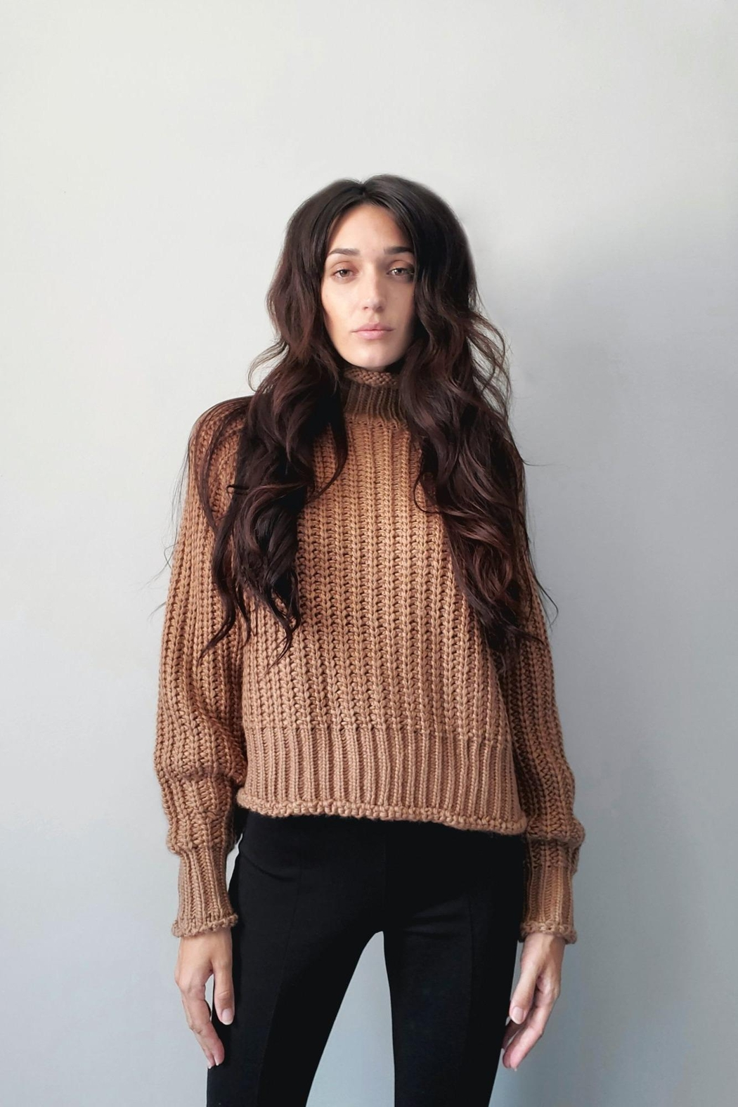 LBLC the Label  Jules Sweater - Front Cropped Image