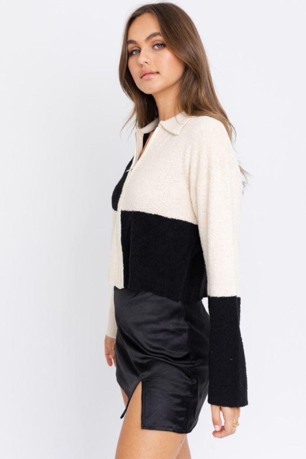 Le Lis Color Block Collared Jacket - Back Cropped Image