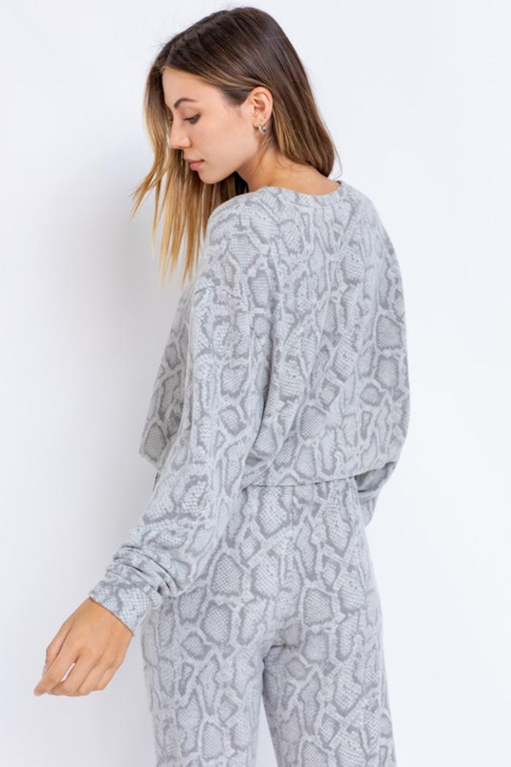 Le Lis Long-Sleeve Oversized Pullover - Back Cropped Image