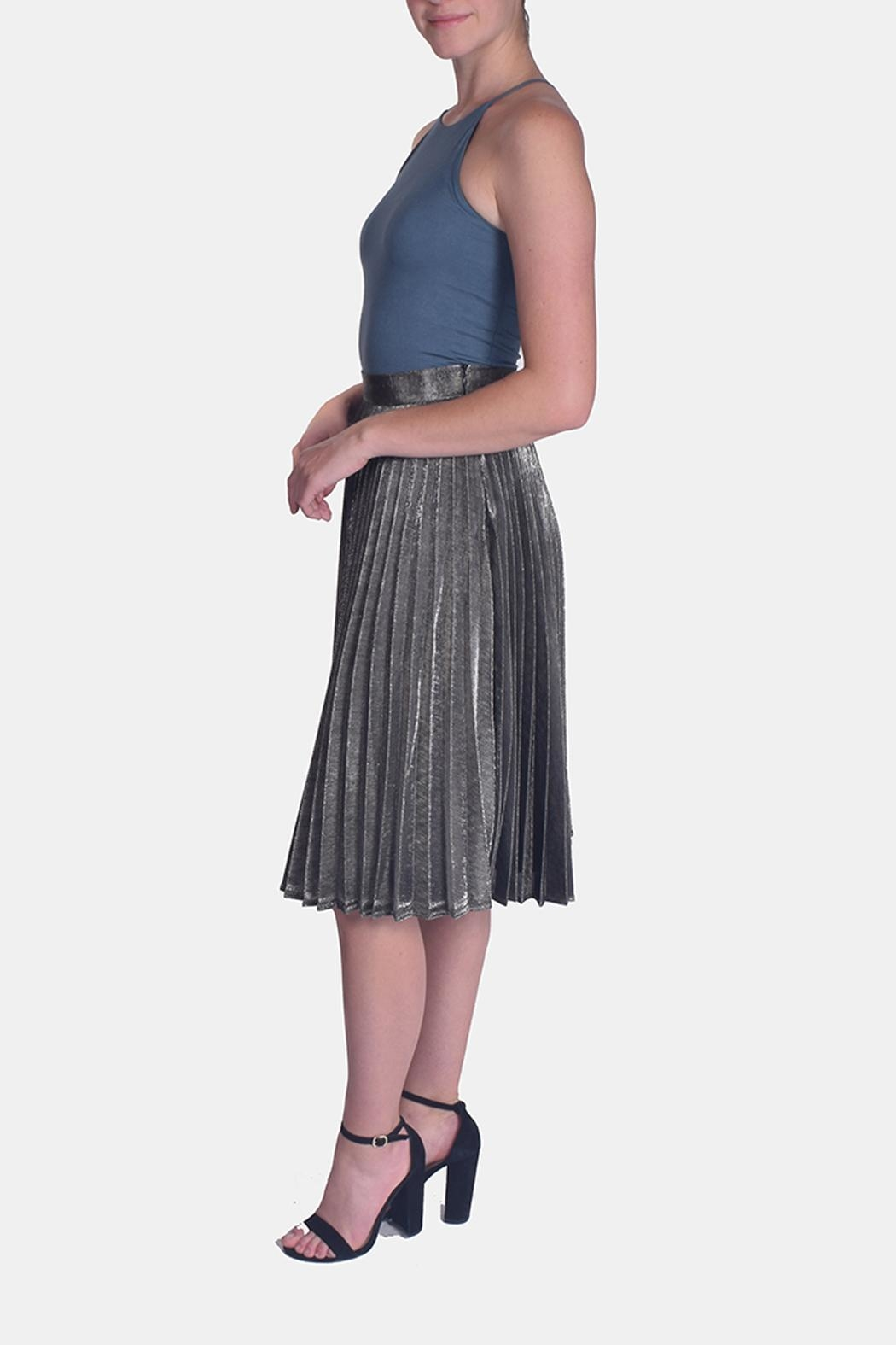 Le Lis Metallic Pleated Skirt - Side Cropped Image