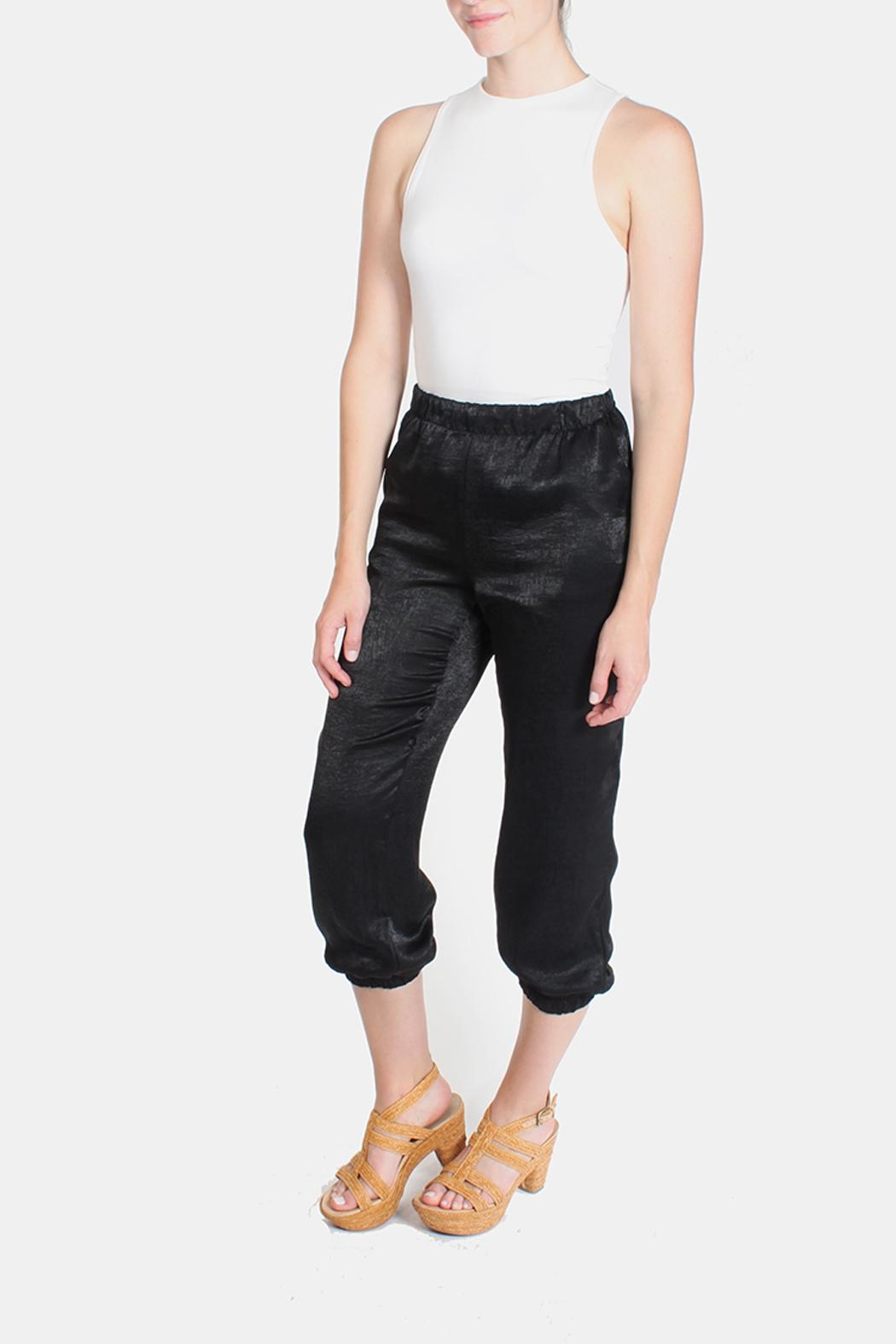 Le Lis Silk Fitted Pants - Front Full Image