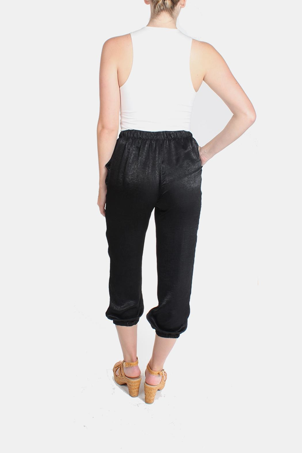 Le Lis Silk Fitted Pants - Side Cropped Image