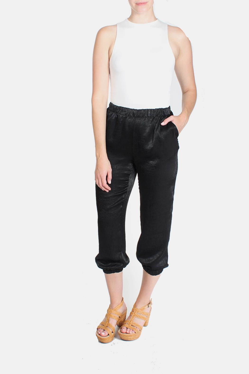 Le Lis Silk Fitted Pants - Main Image