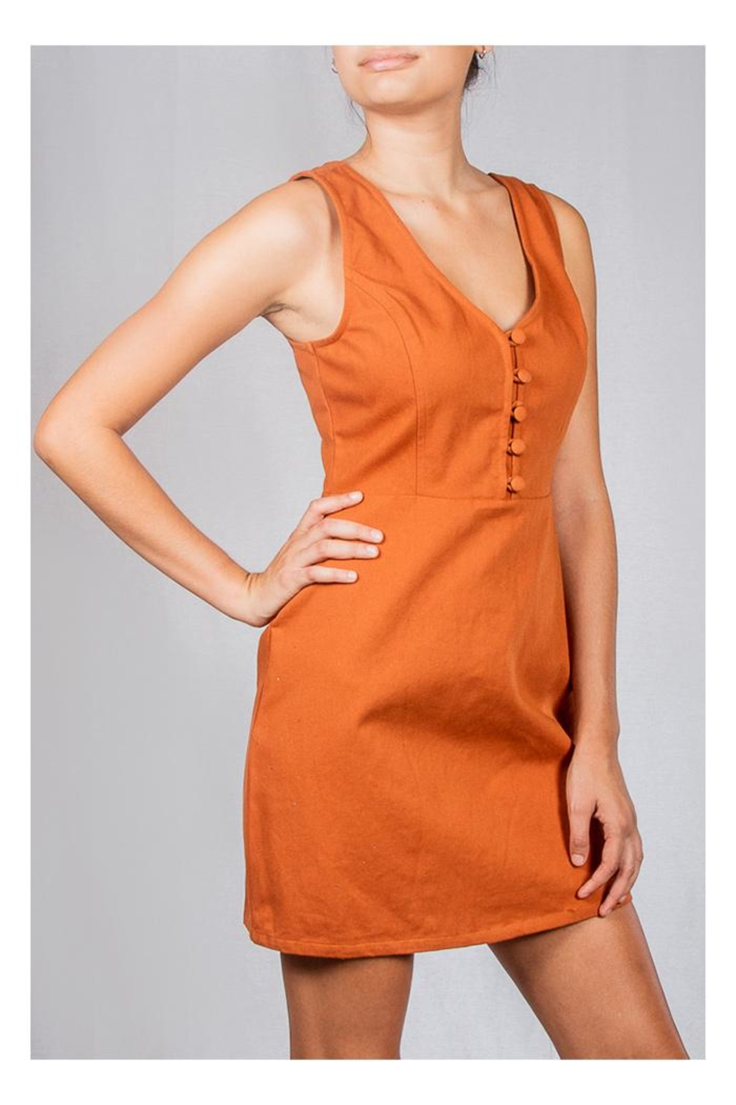 Le Lis Spice Twill Dress - Side Cropped Image