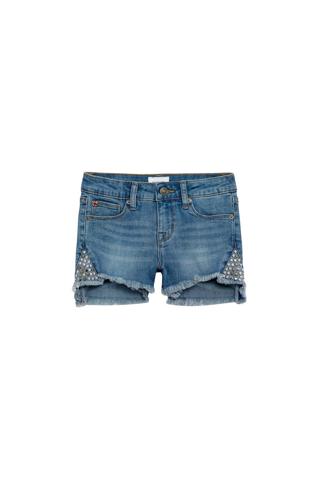 Hudson Leah Shorts - Front Cropped Image