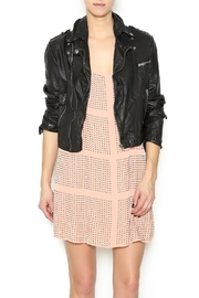 Jakett Leather Moto Jacket - Product Mini Image