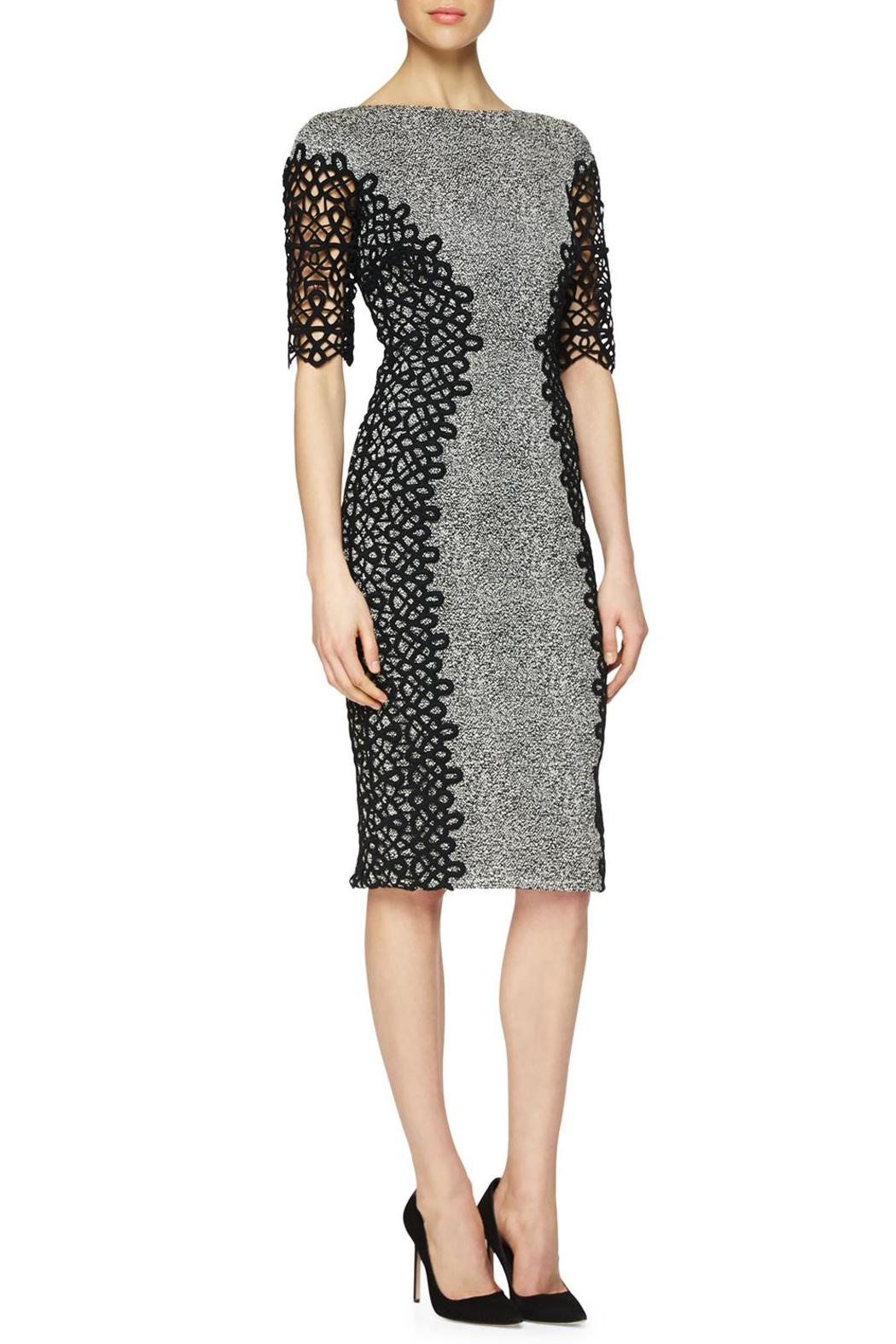 Lela Rose  Lace Placed Dress - Main Image