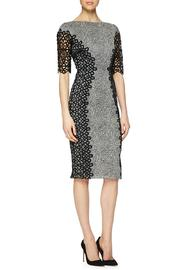 Lela Rose  Lace Placed Dress - Front cropped