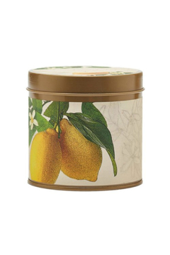 Rosy Rings Lemon Blossom & Lychee Signature Candle - Alternate List Image