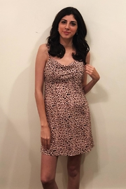 Fascination Leopard Mini Dress - Front cropped