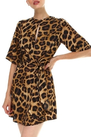 TCEC Leopard Print Dress - Front cropped