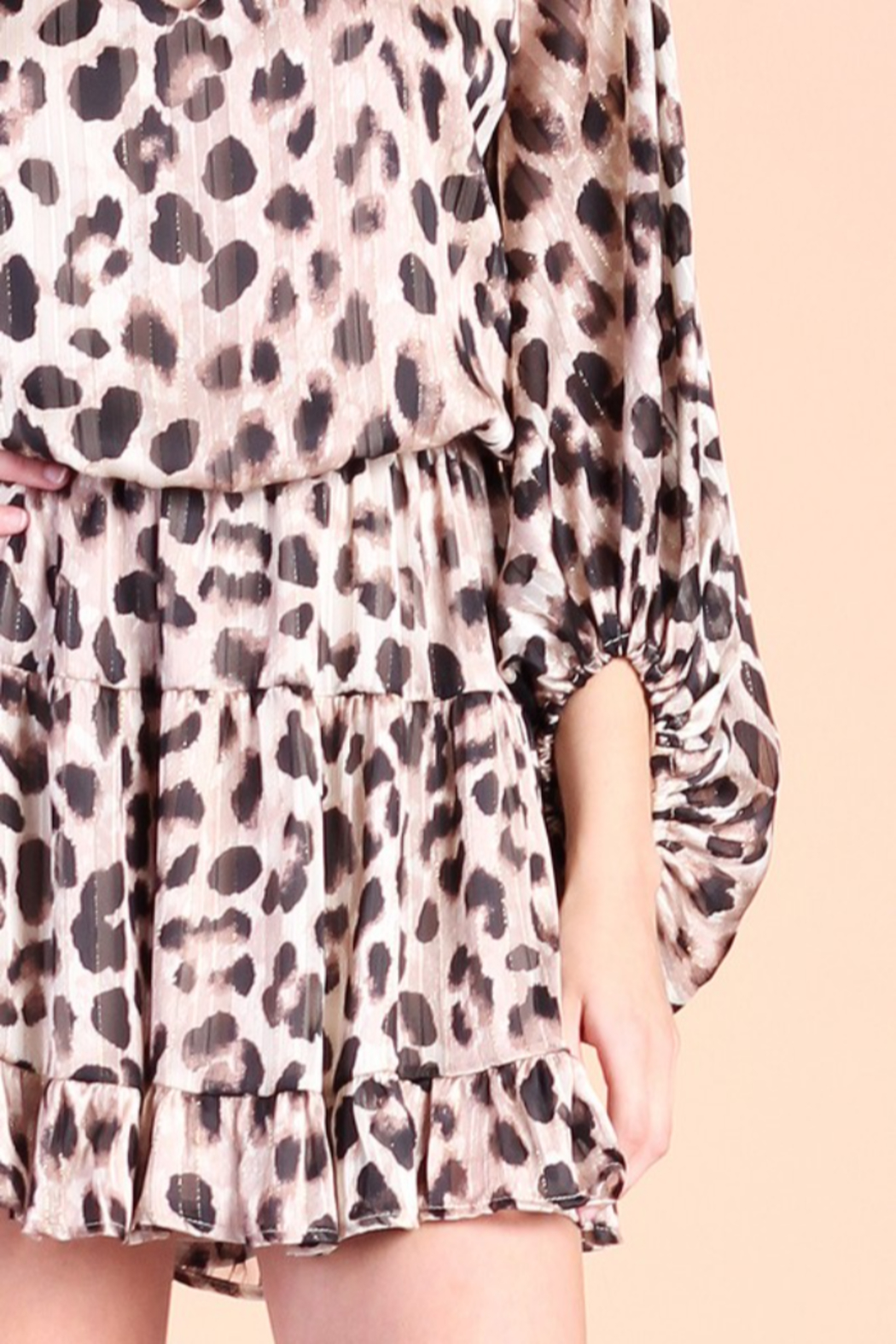 Tyche Leopard Print Dress - Back Cropped Image