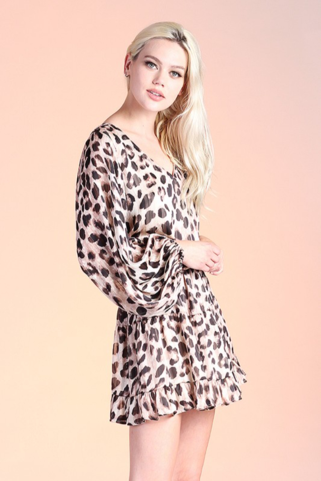 Tyche Leopard Print Dress - Front Full Image