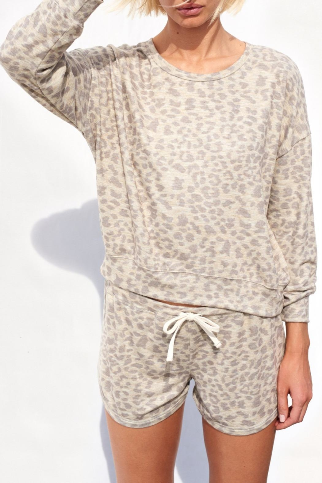 Sundry Leopard Print Sweater - Back Cropped Image